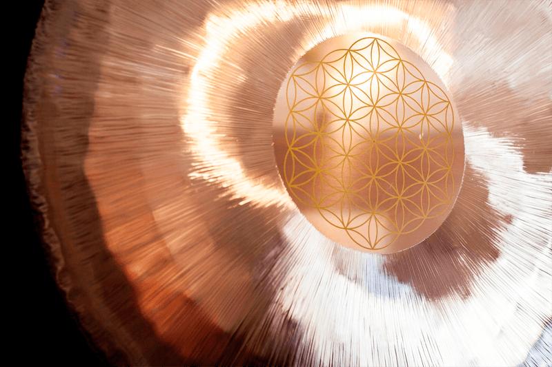 Gong Flor de la Vida -Meinl-