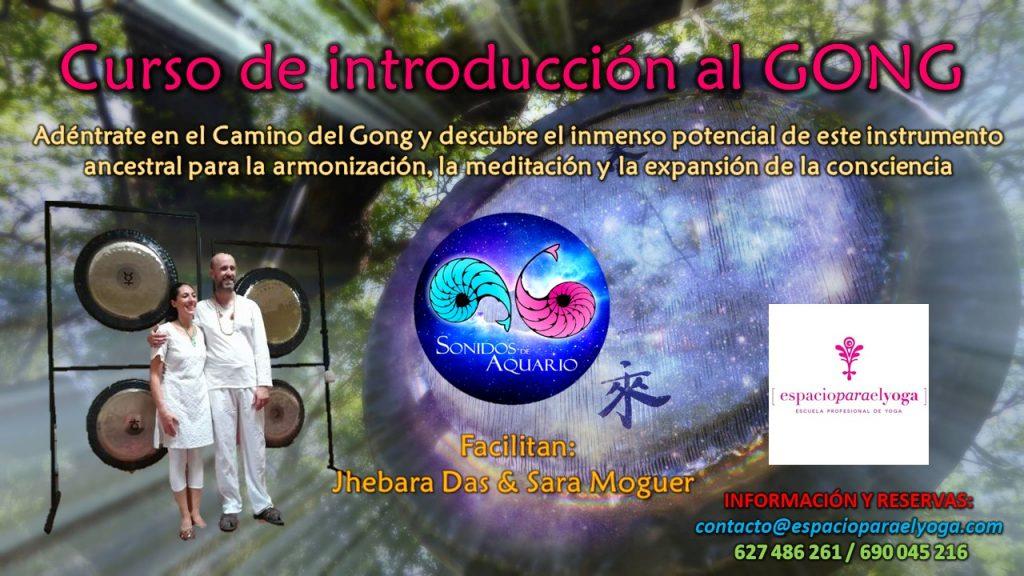Imagen promocional del Curso de Introducción a los de Gongs de Sonidos de Aquario