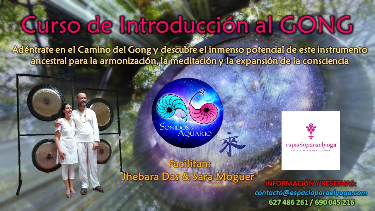 Cartel promocional del Curso de Introducción al Gong