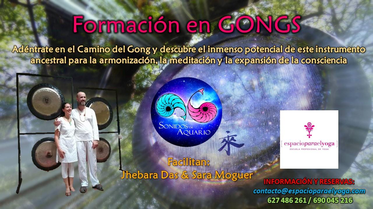 Imagen promocional de la Formación de Gongs de Sonidos de Aquario